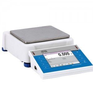 PS6000.3Y 정밀전자저울 분동내장형
