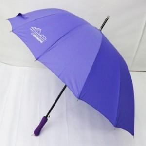 60폰지14살보라색우산[독도우산]