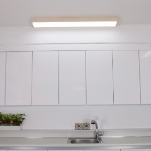 LED 베트라 주방등 50W [3000K/6500K]