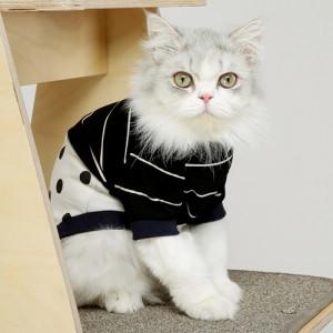 줄줄 땡땡 고양이 티셔츠가격:32,000원