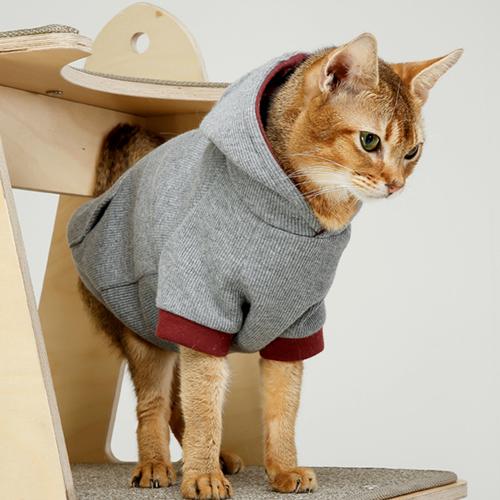 심플 그레이 고양이 후드티