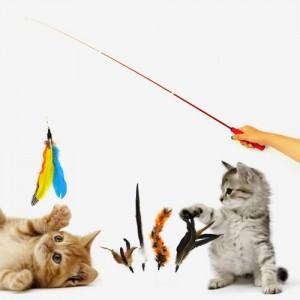 카샤카샤 고양이 깃털낚시대+깃털5종 [사은품증정]가격:15,000원