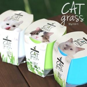 고양이가 좋아하는 풀 캣그라스-원형화분가격:8,900원