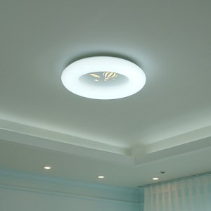 [W-C-L-0028]스카이 투톤 LED 방등(간접)