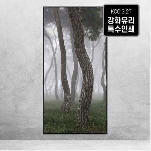 [오라프레임] 나에게 다가온 소나무 22