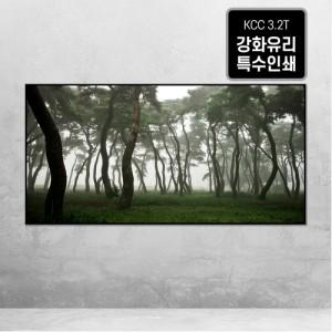 [오라프레임] 나에게 다가온 소나무 11