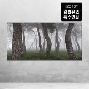 [오라프레임] 나에게 다가온 소나무 9
