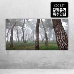 [오라프레임] 나에게 다가온 소나무 7