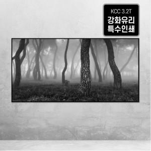[오라프레임] 나에게 다가온 소나무 12