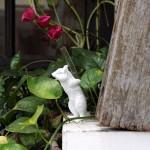다람쥐 화병 - 백팩화이트 투명 유리 꽃병 오브제 한송이 디퓨저스틱