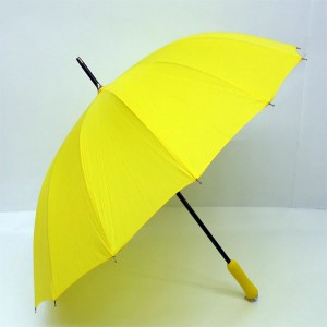 60폰지노랑우산.노란우산(키르히탁)