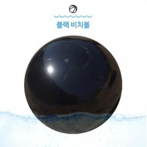 (대)블랙 비치볼