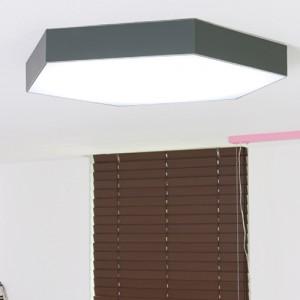 LED 아이린 그레이 방등 50W [3000K/6500K]