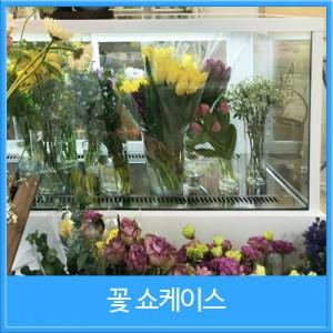 중소형 꽃쇼케이스 사각타입 뒷문형(블랙/화이트/스텐)[900×650×1200]