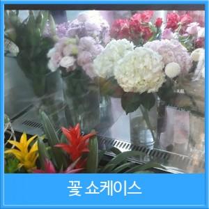 꽃쇼케이스 사각 뒷문형(블랙/화이트/스텐)[1200×650×1200]
