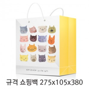 규격 칼라 코팅 쇼핑백 122호