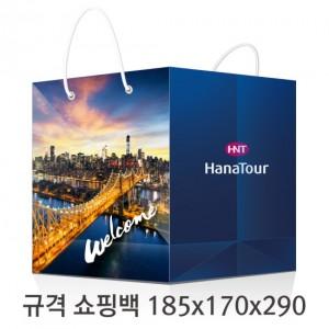 규격 칼라 코팅 쇼핑백 116호