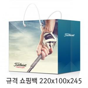 규격 칼라 코팅 쇼핑백 106호