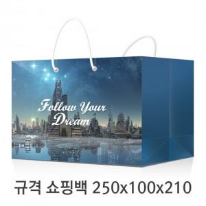 규격 칼라 코팅 쇼핑백 107호