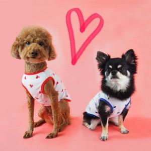 강아지 사랑해 민소매 나시 티셔츠 S~XL가격:9,900원