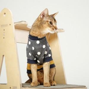 노랭 땡땡이 고양이 티셔츠가격:32,000원