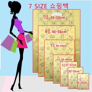 쇼핑백 비닐쇼핑백 HD쇼핑백 팬시쇼핑백 5호