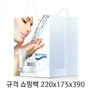 규격 칼라 코팅 쇼핑백 119호