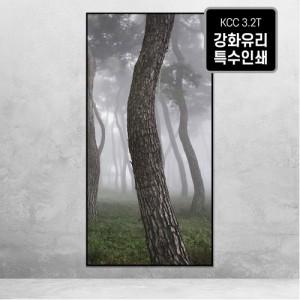 [오라프레임] 나에게 다가온 소나무 23