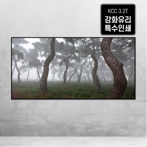 [오라프레임] 나에게 다가온 소나무 4