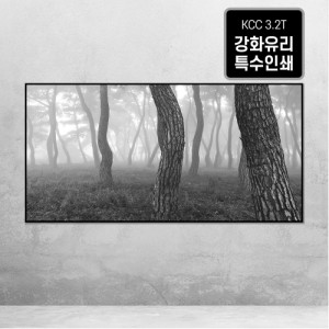 [오라프레임] 나에게 다가온 소나무 8