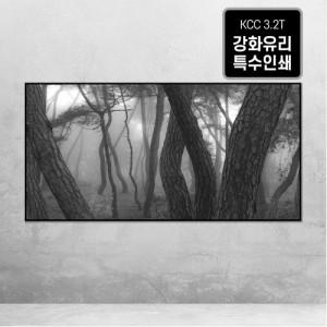 [오라프레임] 나에게 다가온 소나무 시즌 6-1