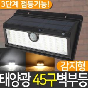 태양광 45구PLUS 감지벽부등