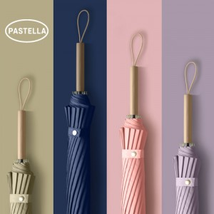 PASTELLA 파스텔 자동우산 16K 장우산 PS-3가격:11,880원